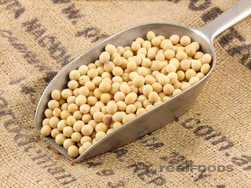 11576 - SELLER OFFER FOR SOYA BEANS Brazil